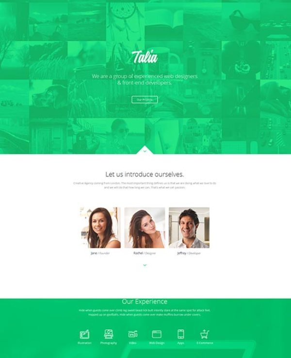 Talia – Responsive Flat Design One Page Template