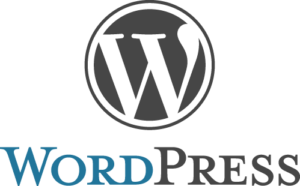Build The Best SEO Optimized Themes With The WordPress