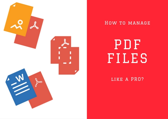 How to Manage PDF Files Like a Pro