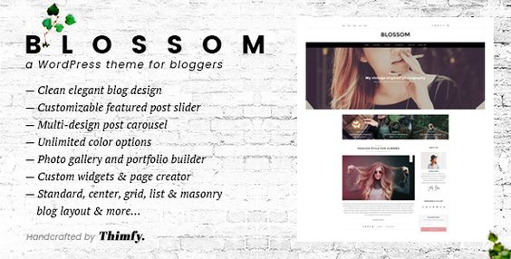 Blossom - A Responsive WordPress Blog Theme