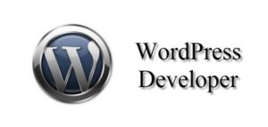 Tips and Tricks for Becoming a Better WordPress Developers
